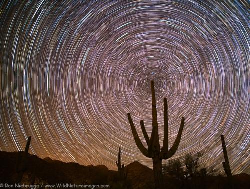 star-trails-cochie